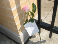 A rose for Richard Wright