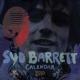 Syd Barrett calendar 2010