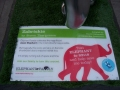 Storm Thorgerson's elephant design