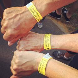 David Gilmour wristbands - Wroclaw, Poland (pic: Jamie Hamlin)
