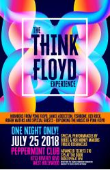 Think Floyd Experience - concert, July 25th 2018